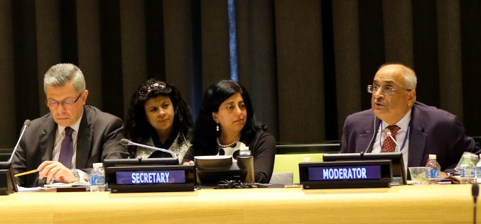 New global agenda demands new approaches to public policy making – SV's Chair at the HLPF of the United Nations