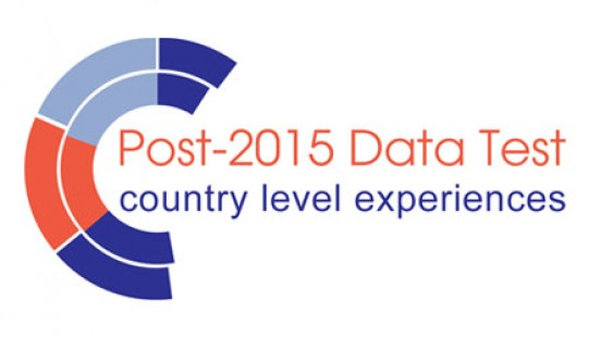 Article: Unpacking the Data Revolution at the Country Level – Initial Findings
