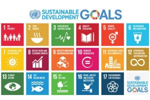 Sustainable-development-goals-SDGs-300x200