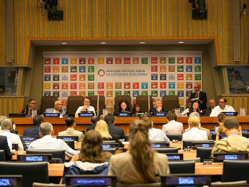 Dr Debapriya Bhattacharya at HLPF 2017